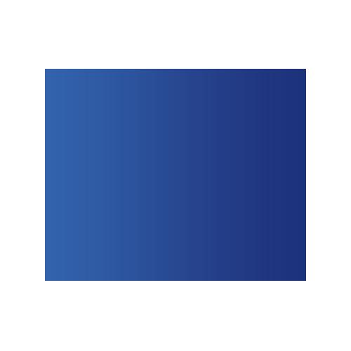 WLAN Icon